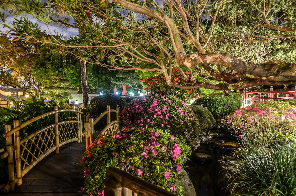 Japan Pavilion garden night Epcot