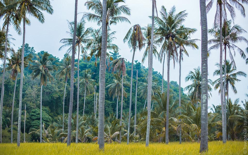 Rang-Yai-Island-Phuket-7223