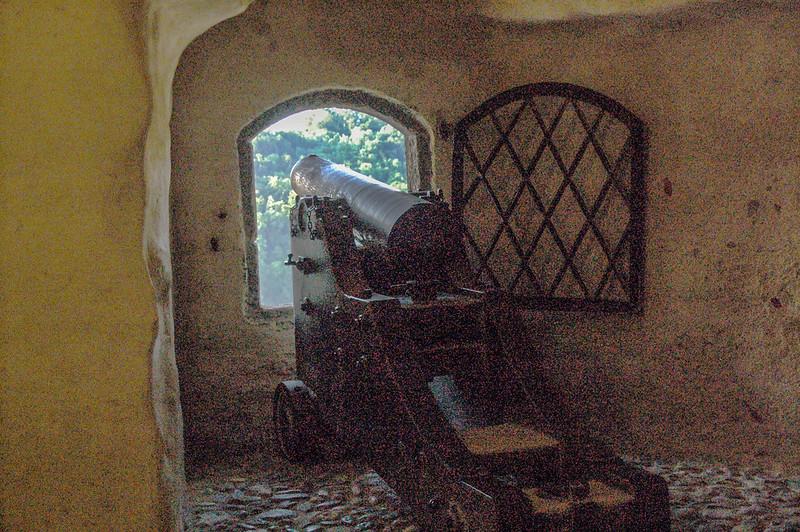 薩爾茲古堡 9