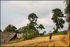 Village de Longwa