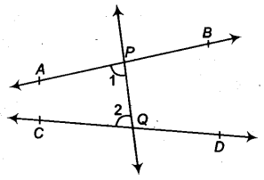 Introduction to Euclids Geometry Class 9 Notes Maths Chapter 3 5