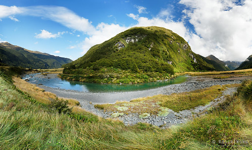 2019 aspiringnationalpark gillespiepasscircuit nz nationalpark newzealand rogertwong sel24105g sony24105 sonya7iii sonyalpha7iii sonyfe24105mmf4goss sonyilce7m3 southisland bushwalk hike tramp travel trek valley walk