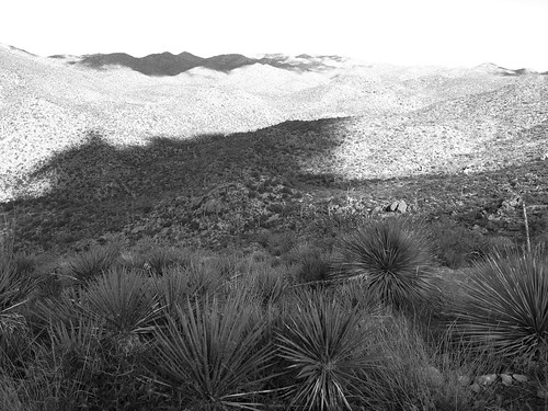 arizona az tortolita landschaft landscape wüste desert kaktus kakteen cactus saguaro shrubs sträucher hügel hills berge mountains wolken clouds schatten shadows minimal minimalism minimalismus minimalistisch abstrakt abstract monochrome sw bw tal valley felsen rocks boulders