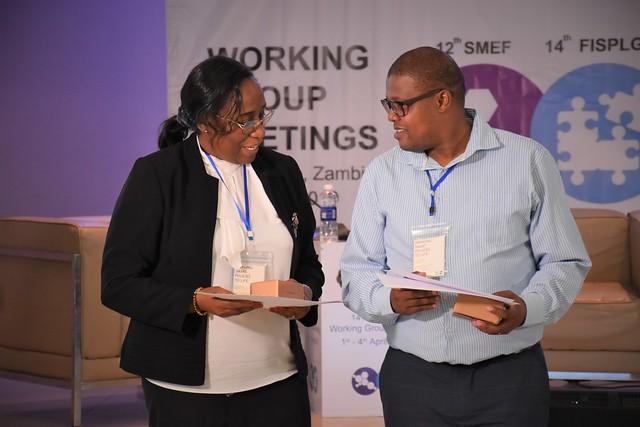 SMEF & FISPLG working group meetings, Livingstone