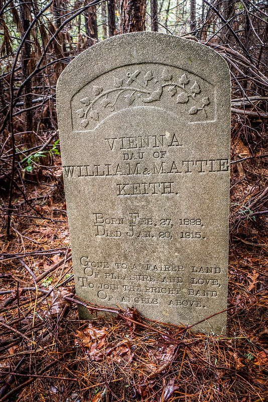 Tall Pines Preserve and South Saluda Church Cemetery-48