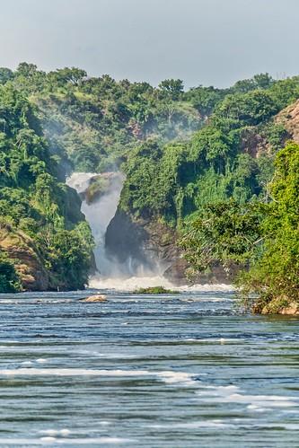 murchinsonfallsnp places scenes uganda whitenilelowermurchisonfalls