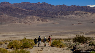 00173 - 2019-02-16 - Hiking Death Valley - Part 3 | by turbodb