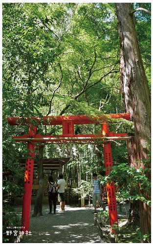嵐山野宮神社-5