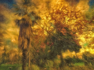 """Tree Scene 