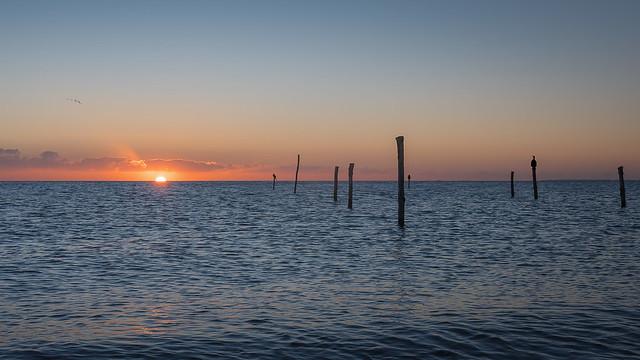 Sonnenaufgang an der Ostsee mit drei Kormoranen auf der Stange