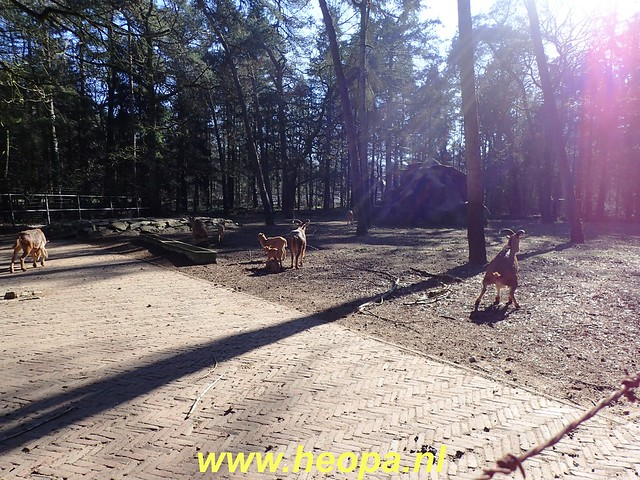 2019-02-27 Austerlitz 14 Km   (57)