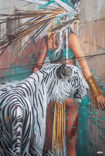 Sonny - white tiger in Waterford-4   by streetartunitedstates