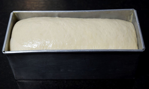 White Bread Dough ready to go into oven