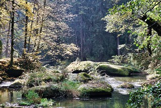 Waldnaabtal, Upper Palatinate | by rgiw