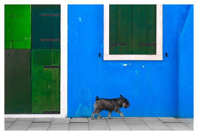 Burano streetlife