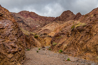 00026 - 2019-02-14 - Hiking Death Valley - Part 1 | by turbodb