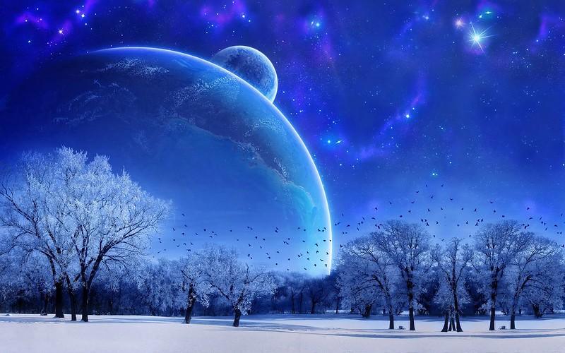 Обои природа, пейзаж, зима, небо, снег, полнолуние, деревья, птицы, вечер картинки на рабочий стол, фото скачать бесплатно