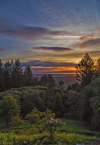 canon6d sunrise sky clouds landscape colour trees nature outdoors usa california