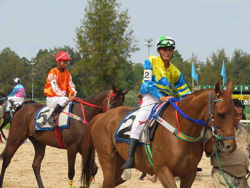 チェンマイ競馬場で馬体を見て予想する