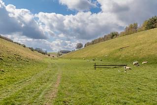 Thixen Dale | by www.andrewswalks.co.uk