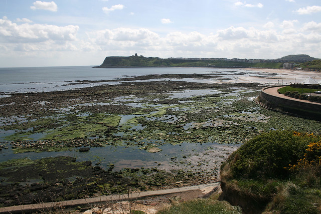 The coast at Scalby Mills, North Yorkshire