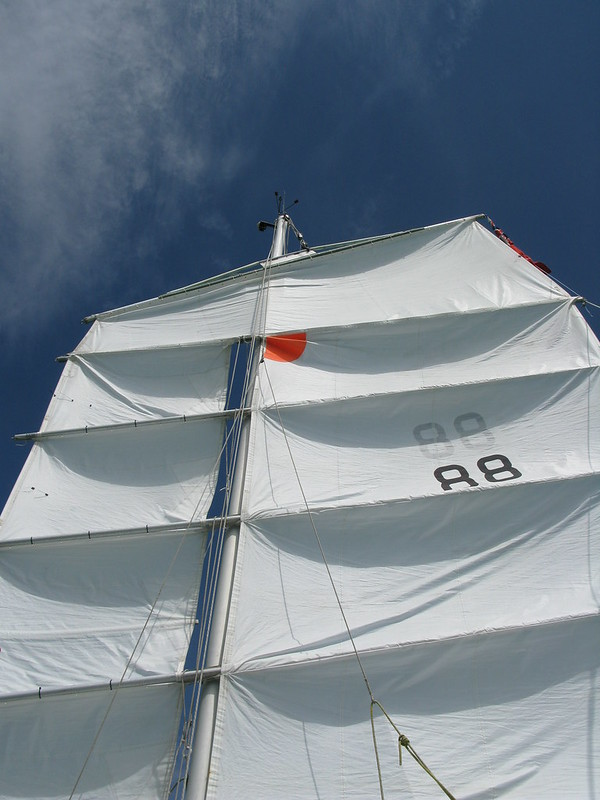 259. Rotated version of  Whistle for a wind cruising plans changed - cruising plans changed