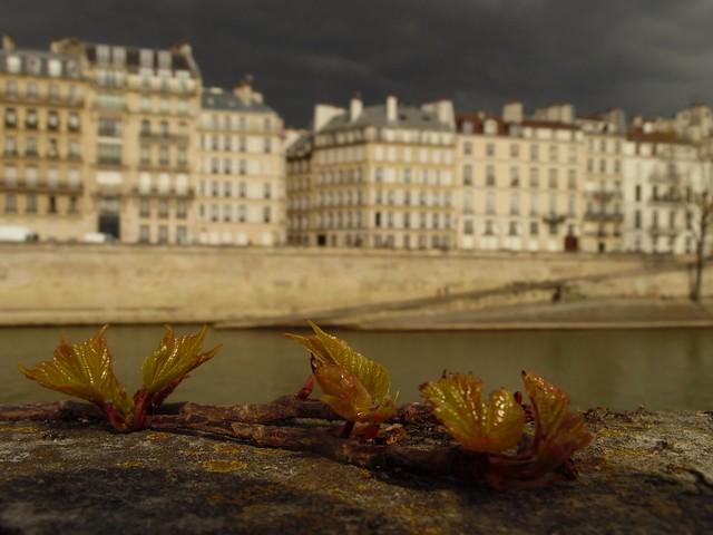 Étrange lumière de printemps à Paris... Strange spring light in Paris...