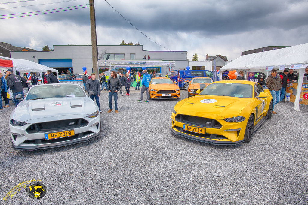 Mustang Fever Saterday