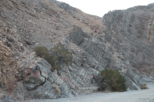 0293 Angled rock strata in Cottonwood Canyon Wash as we head through the narrow section   by _JFR_