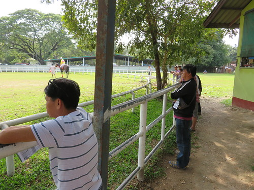 チェンマイ競馬場のパドックを眺める人々