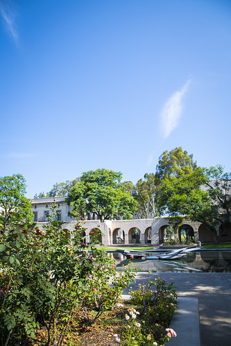 Millikan Pond_1734