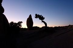 Full silhouette of Penguin Rock and Junipter