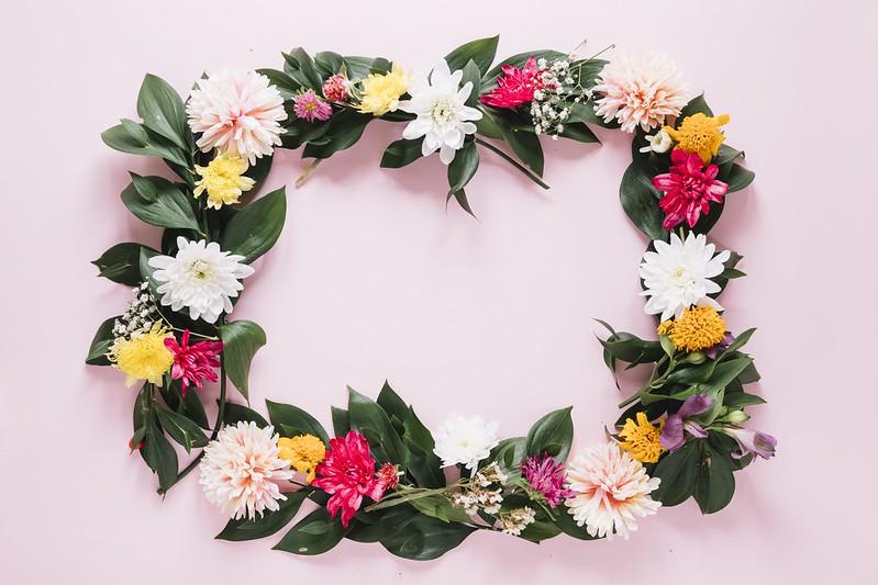 Обои цветы, рамка, colorful, хризантемы, flowers, frame, floral картинки на рабочий стол, раздел цветы - скачать