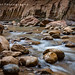Symphony of Boulders, Virgin River Narrows, Zion N.P., Utah by zellerw0