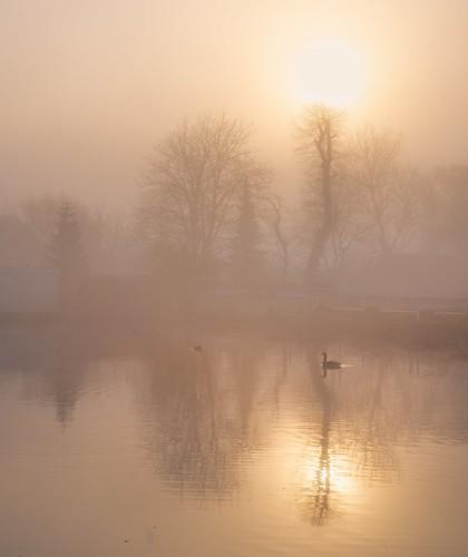 haarlem noordholland nederland nl ringvaart haarlemmermeer sunrise