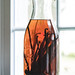 Homemade Vanilla Extract by Pamela Greer