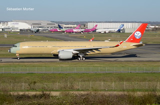 350.941 SICHUAN AIRLINES F-WZGT 281 TO B-306N 05 03 19 TLS