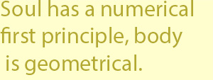 3 has a numerical first principle, whereas the first principle of the body is geometrical