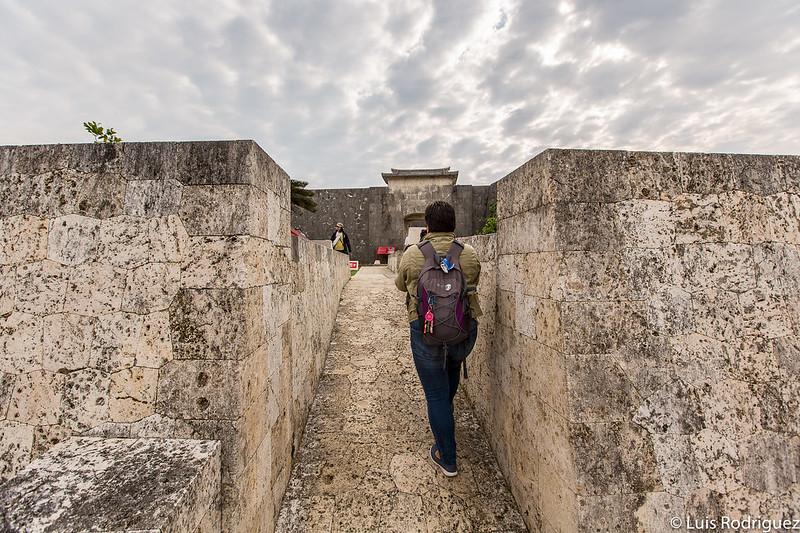 Subiendo las murallas