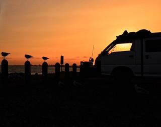 silhouette at Werribe beach ⚓