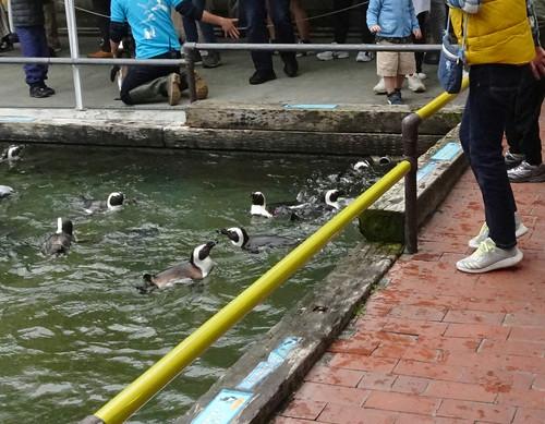 掛川 花鳥園