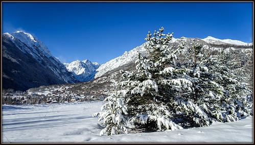 branche ciel extérieur hautesalpes massifdesecrins montagne neige paysage rochers vallouise sapins