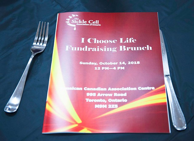 2018 I Choose Life Fundraising Brunch