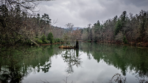 Tall Pines Preserve and South Saluda Church Cemetery-1 | by RandomConnections