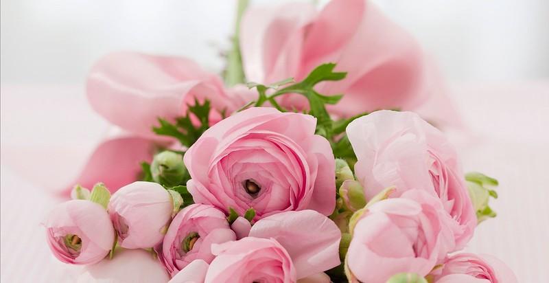 Обои цветы, букет, ранункулюсы картинки на рабочий стол, раздел цветы - скачать