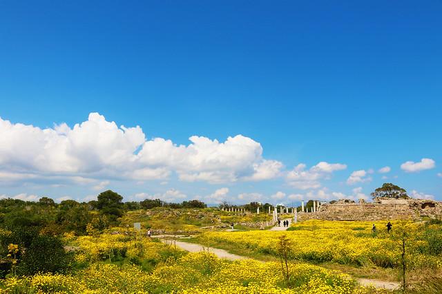 Ancient Salamis cyrpus