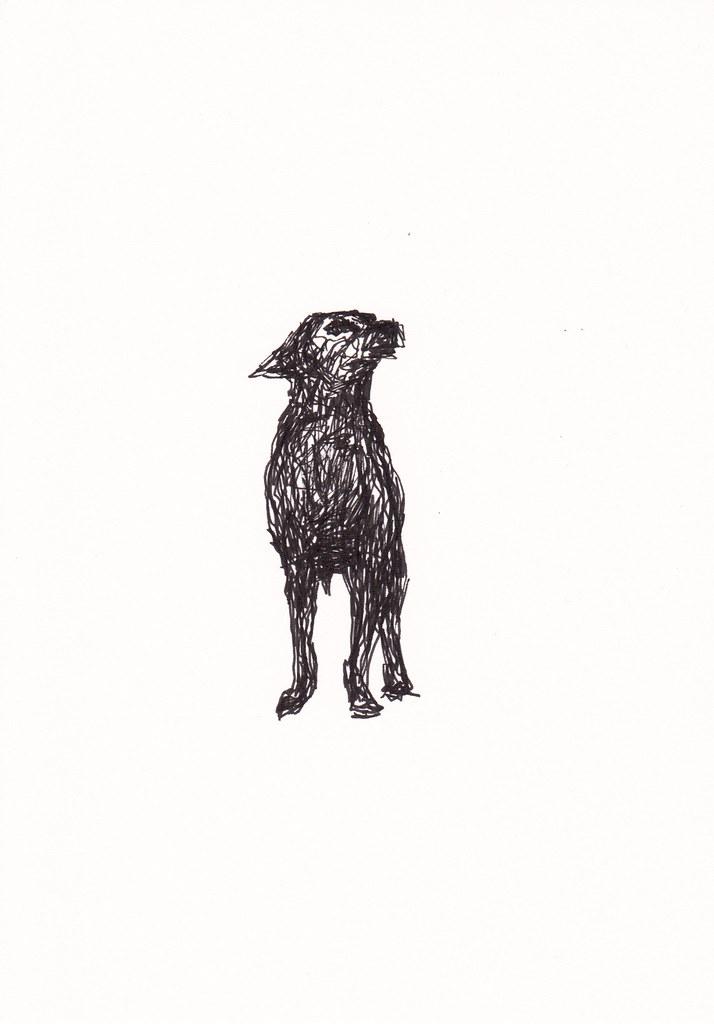Doodle Dog [20180312]   Doodle Dog Quick inkpen sketch based…   Flickr