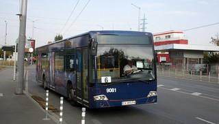 9081 - 6 | by zahariev1999