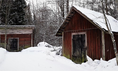 20190305_100933 | by www.ilkkajukarainen.fi