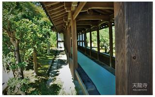 嵐山天龍寺-22